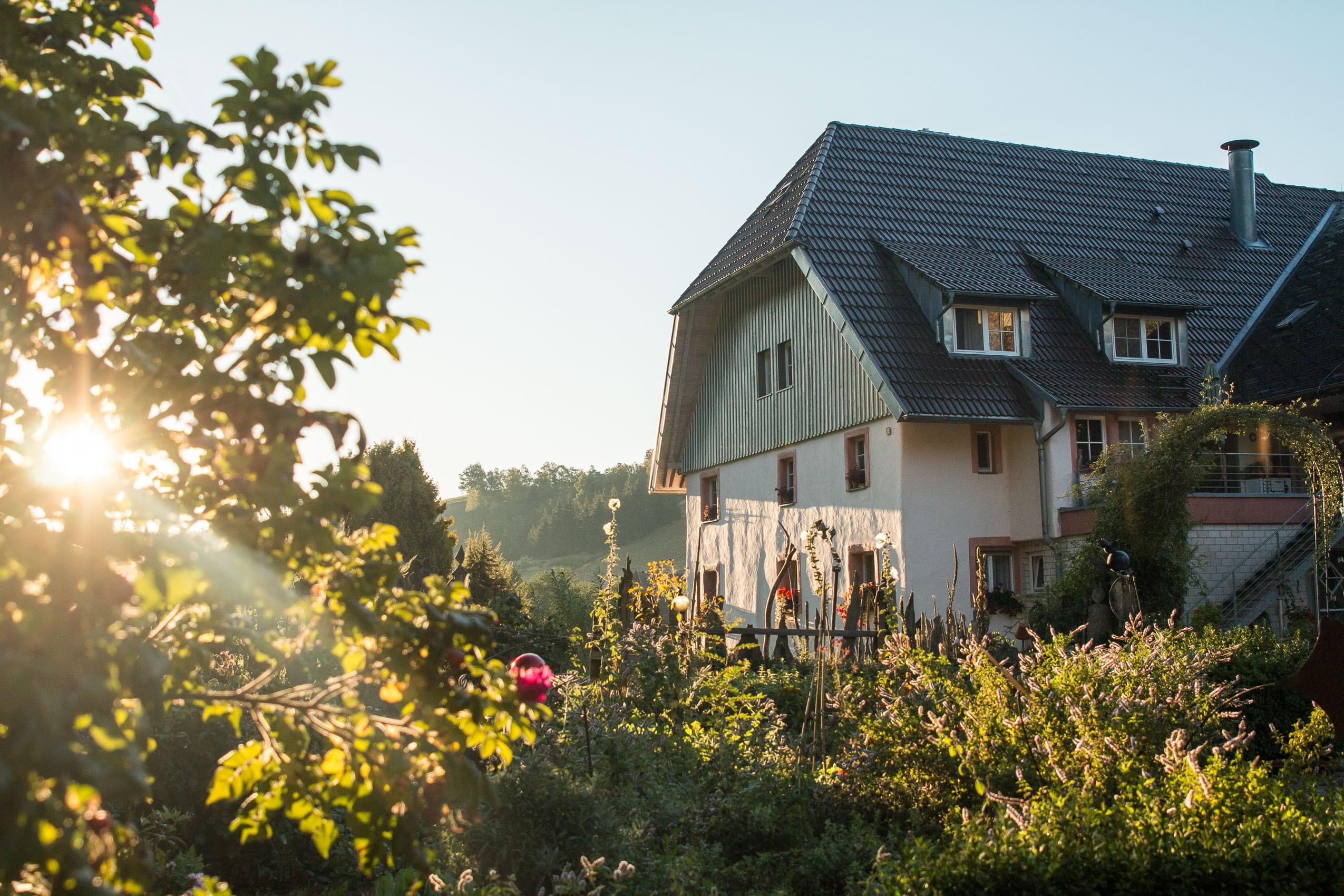 Morgenstimmungen auf einem Bauernhof im Schwarzwald